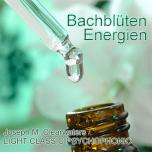 CDs: Die einzelnen Bachblüten - Vol. 1-6 je