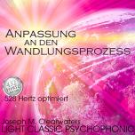 CD: Anpassung an den Wandlungsprozess - 528 Hz