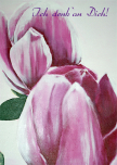 Kunst-Postkarte |  Magnolien